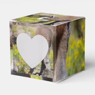 Alpaca Gift Box Rossi Party Favour Box