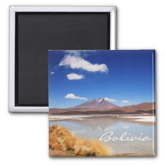 Altiplano landscape with volcano in Bolivia Magnet