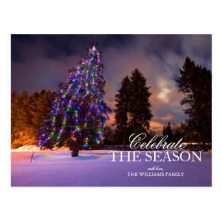 Amazing dusk light and Colored Christmas tree Postcard