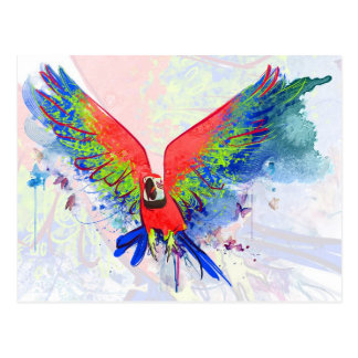 Amazon Parrot Macaw Postcard