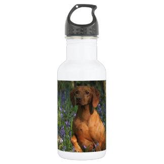 Amber 532 Ml Water Bottle