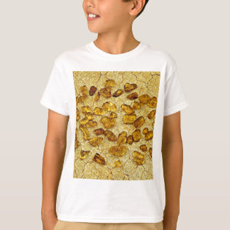 Amber inclusions | T-Shirt
