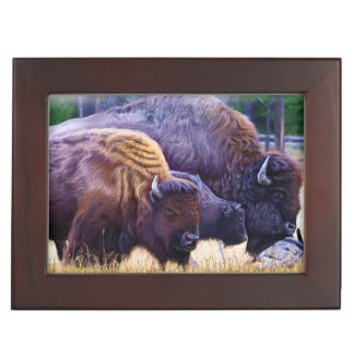 American Bison Family Keepsake Box