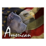American Pitbull Terrier Dog, Flag, Bald Eagle