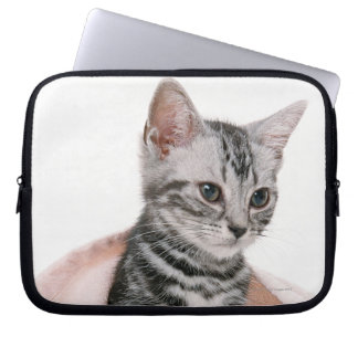 American Shorthair 2 Laptop Sleeve