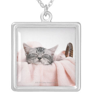 American Shorthair Cat Silver Plated Necklace