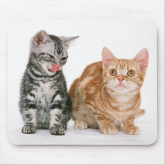 American Shorthair Mouse Pad