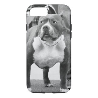 American Staffordshire terrier iPhone 7 Case