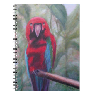 AMY Photo Notebook