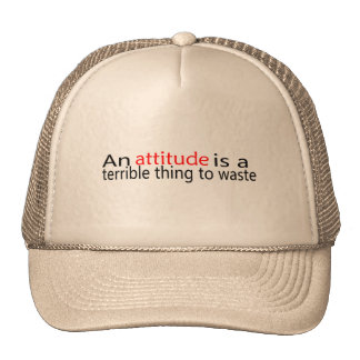 An Attitude Is A Terrible Thing To Waste Cap