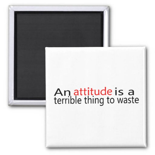 An Attitude Is A Terrible Thing To Waste Magnets