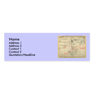 An Authentic 1690 Pirate Map (with embellishments) Pack Of Skinny Business Cards