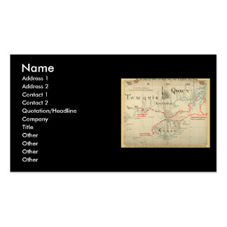 An Authentic 1690 Pirate Map (with embellishments) Pack Of Standard Business Cards