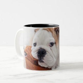 An English Bulldog Puppy Playing With A Bulldog Two-Tone Coffee Mug