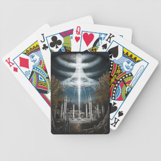 AN-GRD-6 Self Sustaining Array  Huntley Meadows Poker Deck