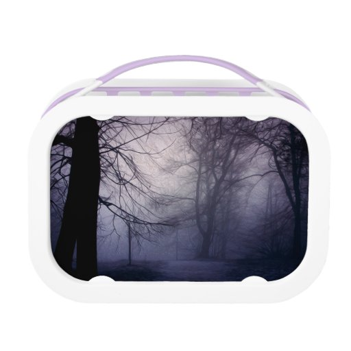 An image of a beautiful forest with fog lunch box