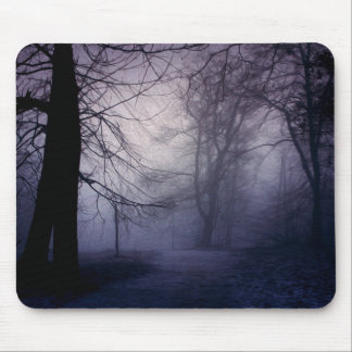 An image of a beautiful forest with fog mouse pads