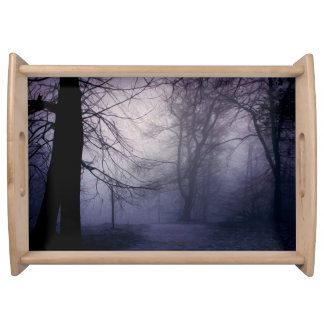 An image of a beautiful forest with fog serving platter