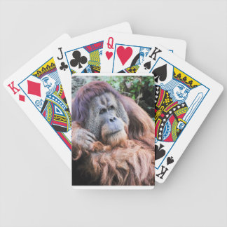 An Orangutan Named Henry Bicycle Playing Cards