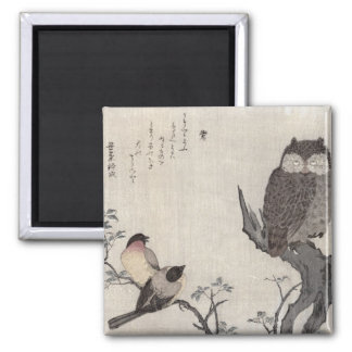 An Owl and two Eastern Bullfinches Square Magnet