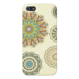 Anatomical Art Hand and Knee Cover For iPhone 5/5S