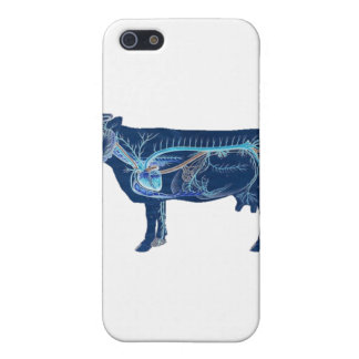 Anatomical Cute Cow iPhone 5/5S Cover