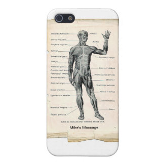 Anatomy Anterior Cover For iPhone 5/5S