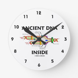 Ancient DNA Inside (DNA Replication) Round Clock