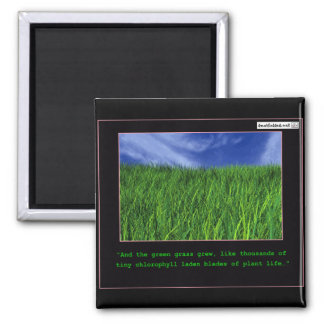 And The Green Grass Grew… Refrigerator Magnets