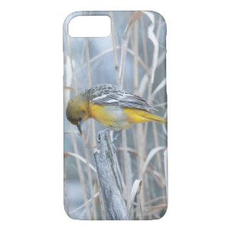 Animal Bird Baltimore Oriole iPhone 7 Case