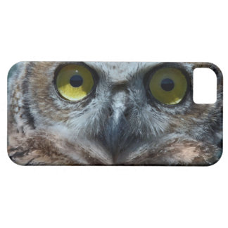 Animal Bird Great Horned Owl peeping in the night iPhone 5 Cases