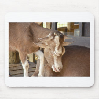 Animal Mother and Baby Goat Mouse Pad