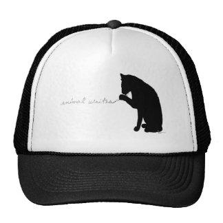 animal writes hats
