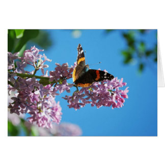 Annie's Butterfly Note Card