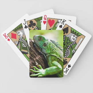 another green day bicycle playing cards
