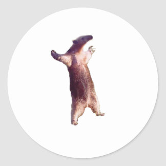Anteater Classic Round Sticker