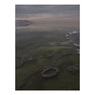 Antelope Island Tidal Sculpture Poster