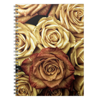 Antique Roses Photo Notebooks