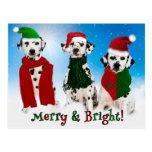APAL - Christmas Dalmatian Dogs Post Card