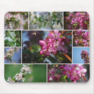 Apple Blossoms Collage Mousepad