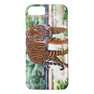 Apple iPhone 7 case of Sumatran tiger photo