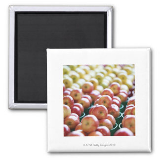Apples at a market stall square magnet