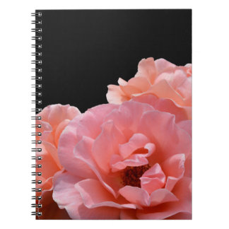 Apricot Rose I Photo Notebook