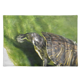 Aquatic turtle getting out of water placemat