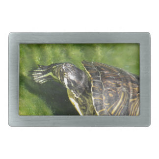 Aquatic turtle getting out of water rectangular belt buckle