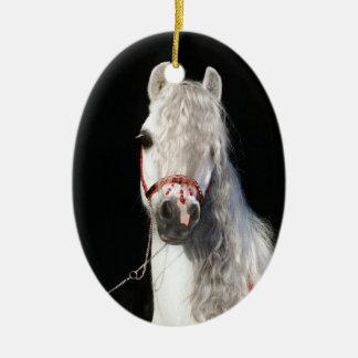 Arabian Horse White Ceramic Oval Decoration