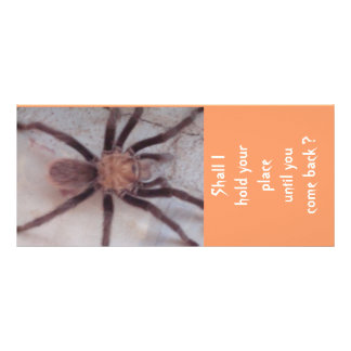 Arachnid Association Bookmark Rack Card