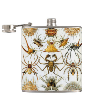 Arachnids by Ernst Haeckel, Vintage Spiders Flask