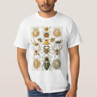 Arachnids by Ernst Haeckel, Vintage Spiders T-Shirt
