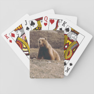 Arctic Alaska Tundra Grizzly Sow Photo Designed Playing Cards